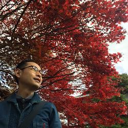 青蓮院門跡紅葉