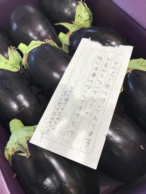 2017-08-03 美佐江ちゃんから