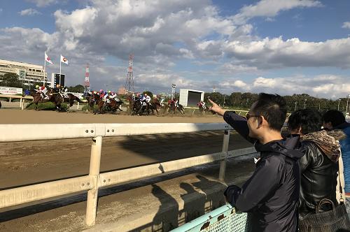 2018-11-20 園田競馬2