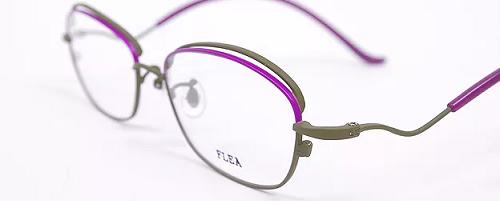 FLEA-F-558